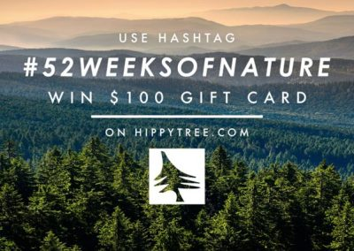A new HippyTree marketing campaign - Photo courtesy of HippyTree