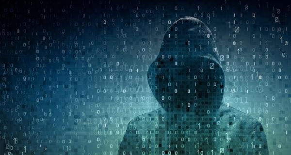 cybercrime procopio