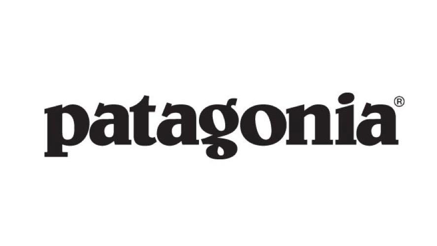 patagonia logo resized